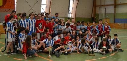 Coupe Loire Atlantique 2014